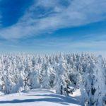 天然雪のメッカ!最高地点の志賀高原スキー場で滑り放題と日帰り入浴