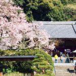 八十八ヶ所霊場遍路の一番札所霊山寺と二番札所極楽寺へ