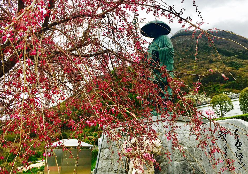 四国八十八ヶ所霊場お遍路の巡拝のやり方とお経の作法