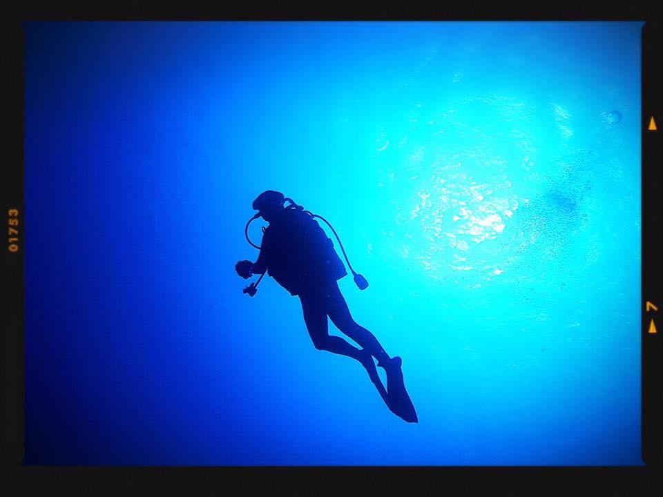 沖縄石垣島でダイビング体験!初心者でもマンタやウミガメに出会えるかも!