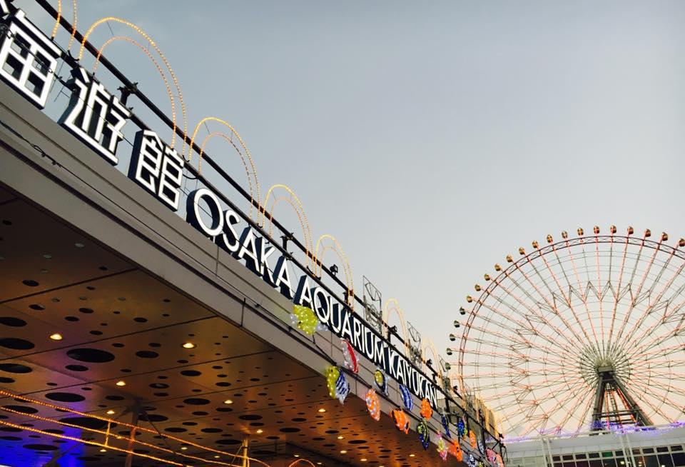 天保山海遊館でイトマキエイやカマイルカ観賞!食事タイムに触れ合い体験