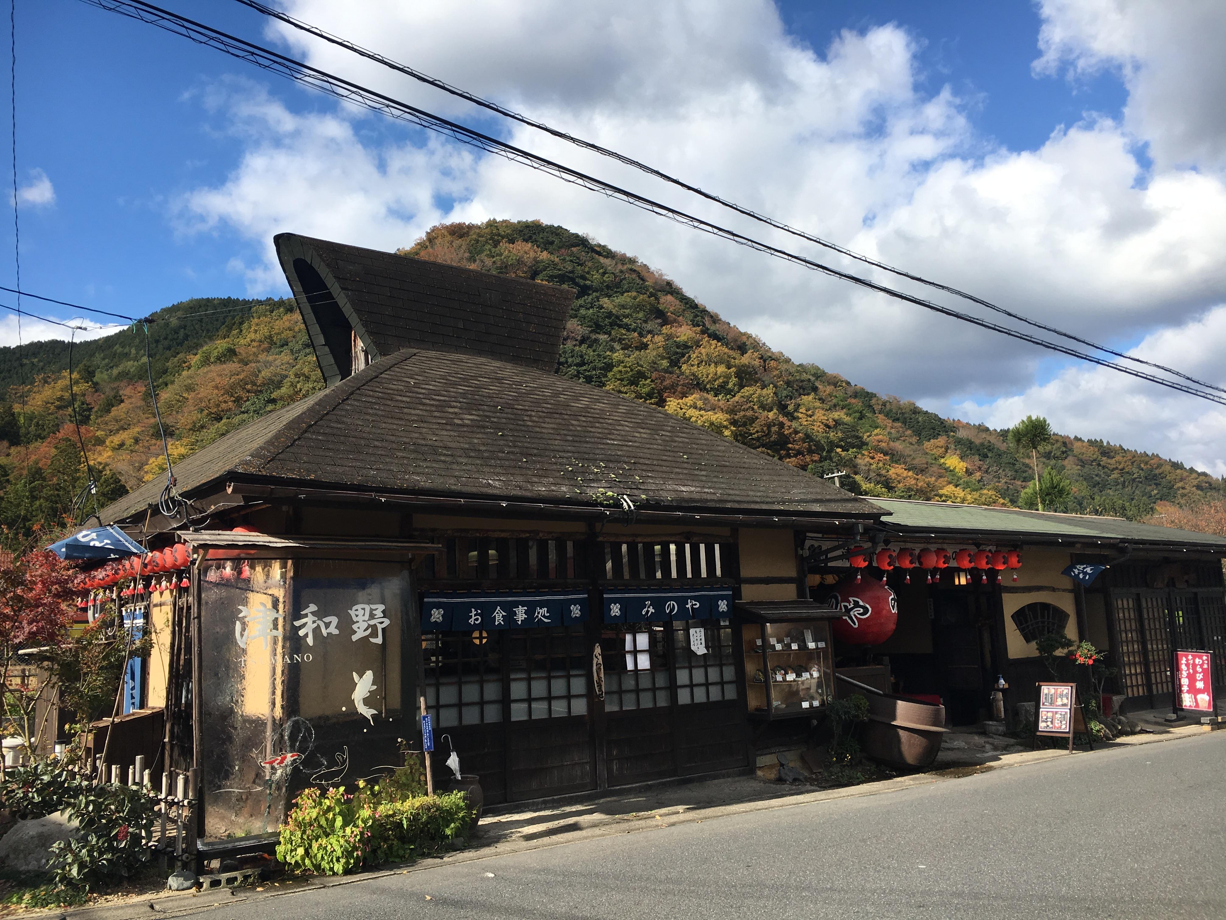 津和野の源氏巻や芋煮を味わう!日原天文台で本州一番の星空観賞も!