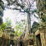 シアヌークビルやプリア・ヴィヘア遺跡!観光スポットinカンボジア