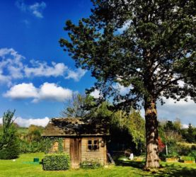青空と小屋