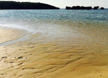 西表島の浜辺