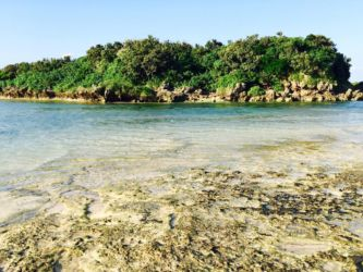 西表島の浅瀬
