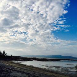 黒島の浜辺