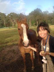 馬の餌やり_LI