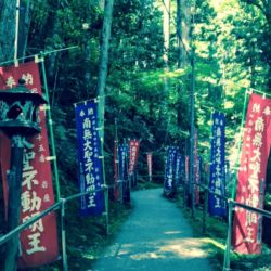 岩屋寺の参道