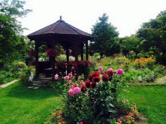 紫竹ガーデンの中庭