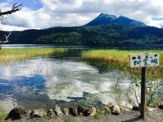 マリモの阿寒湖