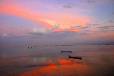 ピンク色に染まる海