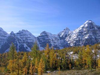 雪山と紅葉
