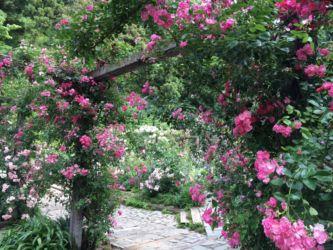 アカオハーブ&ローズガーデン中庭